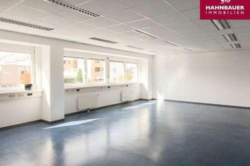 Büro - 345 m2 südlich von Wien in Brunn am Gebirge