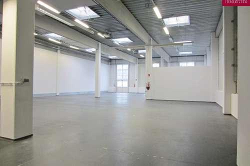 Lagerhalle 650 m2 südlich von Wien, in Wr. Neudorf/Vösendorf zu mieten