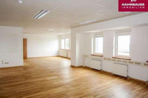 Modernes Büro - 145 m2 südlich von Wien in Wr. Neudorf