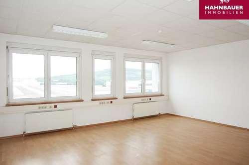 Modernes Büro - 258 m2 südlich von Wien in Wr. Neudorf