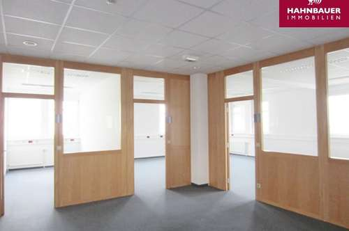 Büro südlich von Wien - 103 m² in Wr. Neudorf