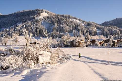 Traumhaftes Chalet im Ortsteil Schartental