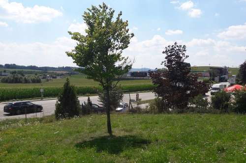 Meggenhofen: Grundstück mit 1.249 m² im Mischbaugebiet