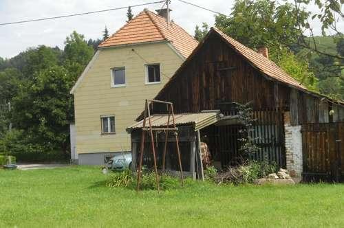 Einfamilienhaus in Stadtnähe