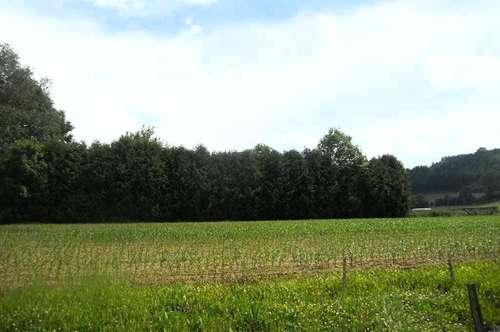 1.666 m² Grundstück mit 750 m² Bauland   in toller  Lage