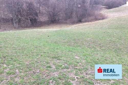 Landwirtschaftliche Fläche in Landeck-Perfuchs!