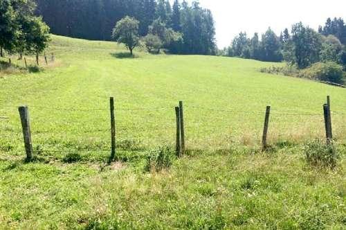Alter Bauernhof in absoluter Ruhelage u. in echter ALLEINLAGE