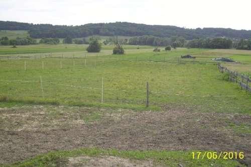 Miete Bauernhof Klagenfurt Nähe für Pferdeliebhaber
