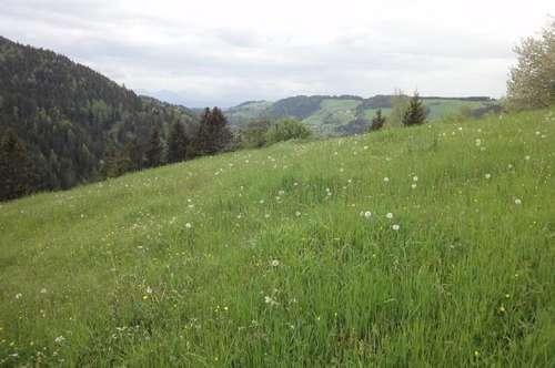 Alter Bauernhof in 1000 m Seehöhe, in echter RUHIGER ALLEINLAGE