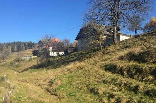 Alter Bauernhof mit 10 ha Grund in Aussichtslage