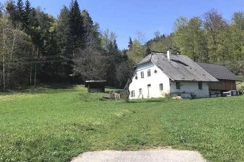 Kleiner Bauernhof 1,9 ha Grund