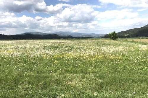 Völkermarktnähe, Landwirtschaft mit 7 ha ebener Ackerfläche u. neuw. Stall