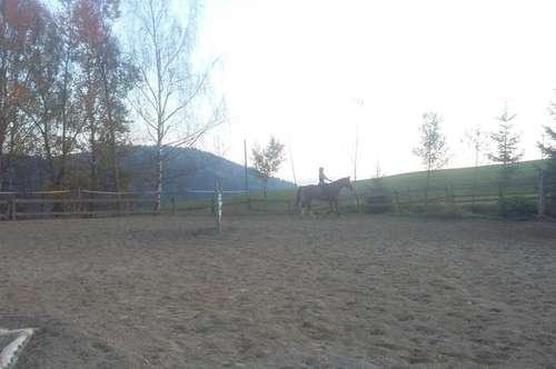 Reiterhof mit 27 Pferdeboxen, in ruhiger Sonnenlage mit Fernsicht, Wörtherseenähe