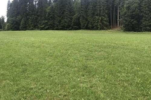 Kleine Landwirtschaft, Bleiburg 1 km