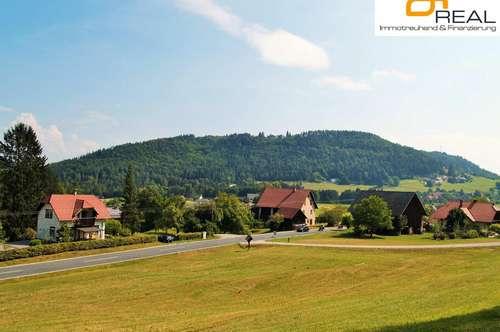 Angst vor Stromausfällen!! Rosental-Naturburschen- Haus mit Großgrund + Waldquelle und Holzoffen
