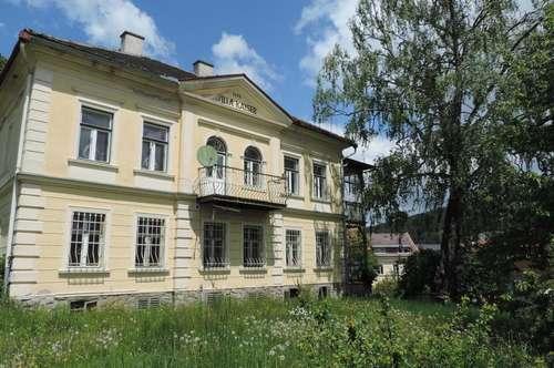 Villa Kaiser !! Neumarkt in der Steiermark
