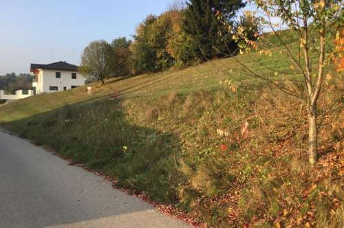 Ein schönes Baugrundstücke mit Ausblick in Ruhelage von Lebertsham