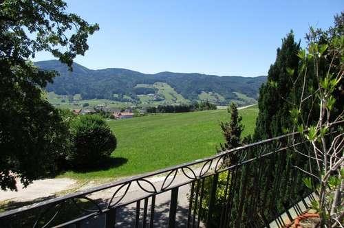 Idyllisches Neubau-Paradies im Mondseeland/Badeplatznutzung am Mondsee möglich