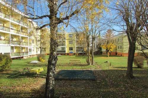 Helle renovierte Wohnung in Waidmannsdorf