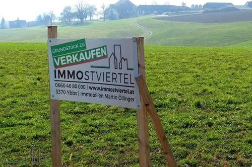 4 Wunderschöne Baugrundstücke in Ybbs/Donau - Interessant auch für Bauträger!