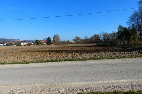 Grundstück für Bauträger in 3370 Ybbs - ca. 18.000 m²