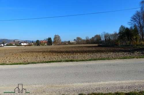 Grundstück für Bauträger in Ybbs - ca. 18.000 m²