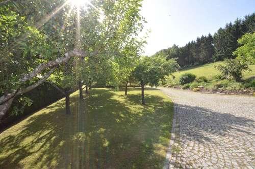 Baugrundstück ohne Bauzwang mit Obstbaumbestand Garagen- u. Gartenobjekt