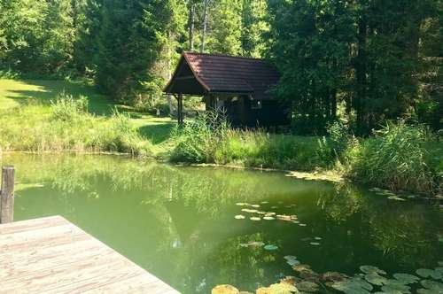 Idyllischer LANDSITZ mit über 10.000m² Grundfläche und großer Teichanlage