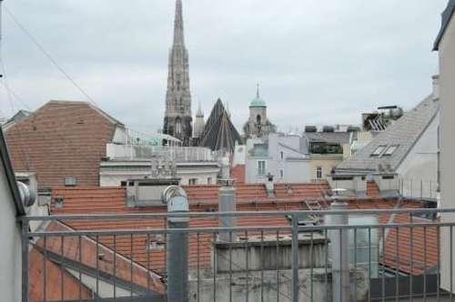 Im Herzen der Stadt - Dachterrassenwohnung mit Stephansdomblick!