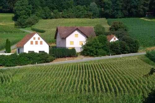 Süd- Oststeiermark: Großes ren. bed. Haus mit toller Innenraumgestaltungsmöglichkeit!