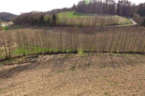 Nähe LAßNITZHÖHE: Landwirtschaftliche Flächen mit circa 8,8 Hektar und Fischteich.