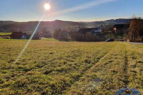 EGGERDORF BEI GRAZ. Bauland mit hoher Baudichte und Freiland. Gesamt ca.1,2 Hektar Grund