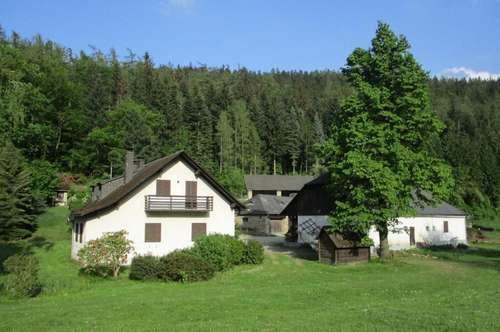 Jagdhaus im Dunkelsteinerwald