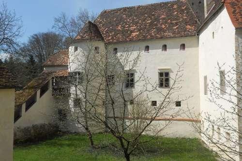 Großzügige Schlosswohnung