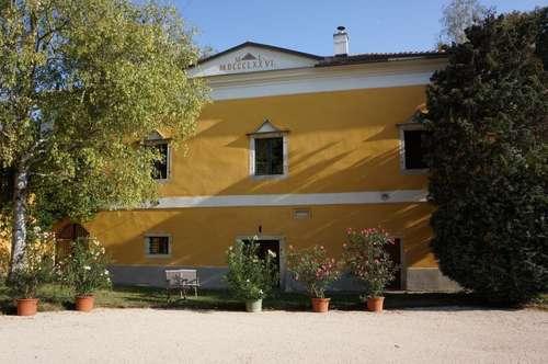 Klösterlicher Meierhof