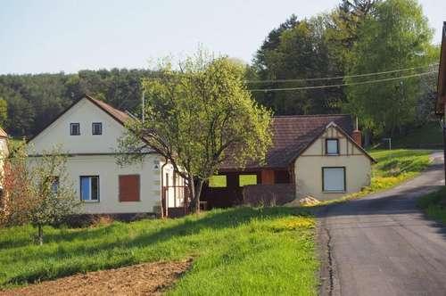 Teilweise saniertes Bauernhaus mit Kellerstöckl in herrlicher Ruhelage!