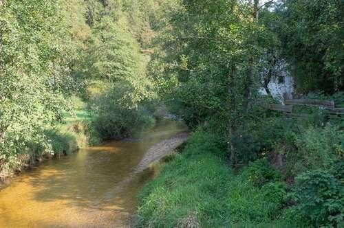 Landwirtschaftliches Anwesen in Naturlage am Fluss in Pierbach (FR)