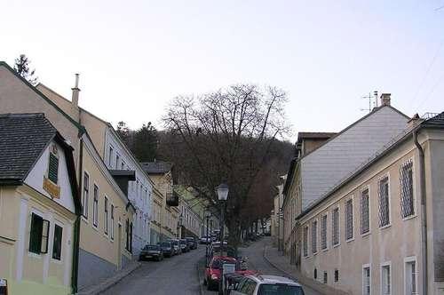 DG Maisonette Wohnung in Salmannsdorf