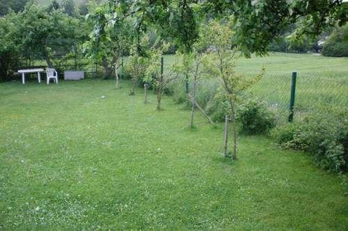 Dreikanthof in Bischofstetten mit Wiese und Äcker