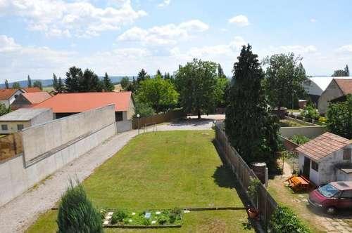 Sorgfältig sanierte sonnige 3-Zimmer-Balkon-Wohnung mit kleinem Eigengarten!