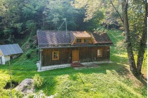 Idyllisches Ferienhaus an der Vellach in Bad Eisenkappel