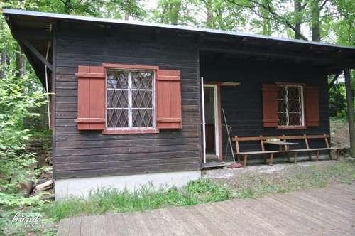 Idyllisches Ferienhaus mit traumhaftem Wald und Wiesengrundstück