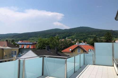 3-Zimmer Dachterrassenwohnung mit 180-Grad Blick !!!