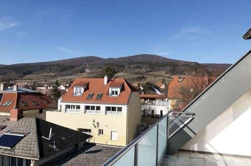 Dachgeschoss-Wohnung mit Bergblick !