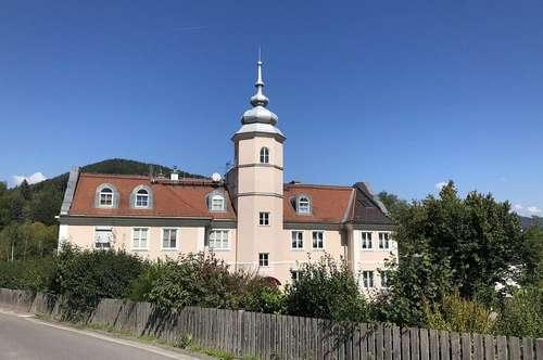 Schlossähnliches Zinshaus in sehr guter Lage in Wartberg