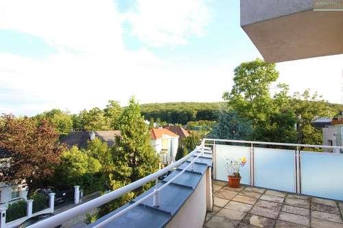 Moderne Terrassenwohnung mit Traumblick in Salmannsdorf