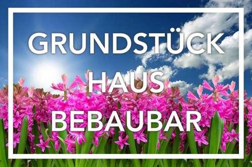 Freude des Frühlings   Fernblick. Grundstück. Grünruhelage. Haus.