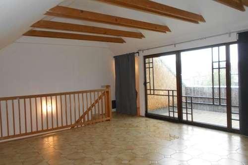 Großzügige 5ZI auf 2 Ebenen mit Galerie, Dachterrasse AllgGarten idyllisch am Fluss parken frei