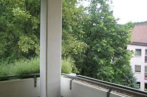 Naturnahe Ruhelage modern sanierte 5ZI+Loggia+Balkon Garage + Parkplatz!