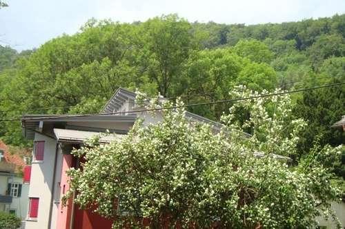 Wetzelsdorf: großer Balkon + Lift - sehr gepflegt - ab sofort - im Grünen